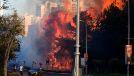 Support Israel Fire Relief Efforts
